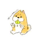 ころころころころ柴犬(個別スタンプ:03)