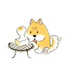 ころころころころ柴犬(個別スタンプ:04)