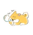 ころころころころ柴犬(個別スタンプ:06)