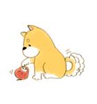 ころころころころ柴犬(個別スタンプ:10)