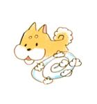 ころころころころ柴犬(個別スタンプ:19)
