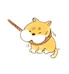 ころころころころ柴犬(個別スタンプ:20)