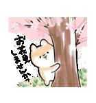 ほんわかしばいぬ<春>(個別スタンプ:3)