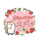 ほんわかしばいぬ<春>(個別スタンプ:17)