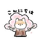 ほんわかしばいぬ<春>(個別スタンプ:23)