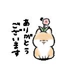 ほんわかしばいぬ<春>(個別スタンプ:26)