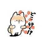 ほんわかしばいぬ<春>(個別スタンプ:30)