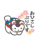 よく使う言葉&気づかい♡犬張子スタンプ(個別スタンプ:06)
