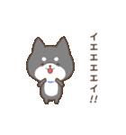動く!もふ柴-黒-(個別スタンプ:10)
