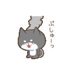 動く!もふ柴-黒-(個別スタンプ:24)