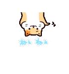 「スタレボ☆彡」第1弾(個別スタンプ:38)
