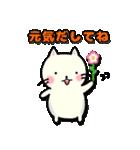 ぷっくりねこちゃん(個別スタンプ:33)