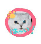 楽しい猫のスタンプ!(個別スタンプ:03)