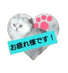 楽しい猫のスタンプ!(個別スタンプ:07)