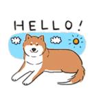 Every Day Dog 柴犬 日本語(個別スタンプ:02)