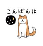 Every Day Dog 柴犬 日本語(個別スタンプ:04)