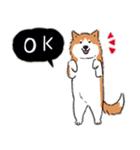 Every Day Dog 柴犬 日本語(個別スタンプ:07)