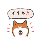 Every Day Dog 柴犬 日本語(個別スタンプ:10)