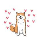 Every Day Dog 柴犬 日本語(個別スタンプ:11)