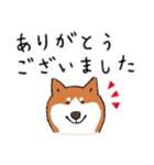 Every Day Dog 柴犬 日本語(個別スタンプ:18)