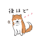 Every Day Dog 柴犬 日本語(個別スタンプ:22)