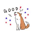 Every Day Dog 柴犬 日本語(個別スタンプ:25)