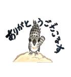 ヤマセミ山ちゃん(個別スタンプ:3)