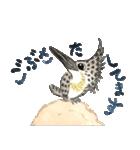 ヤマセミ山ちゃん(個別スタンプ:5)