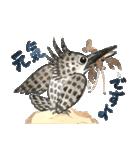ヤマセミ山ちゃん(個別スタンプ:7)