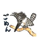 ヤマセミ山ちゃん(個別スタンプ:12)