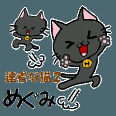 達者な猫2(めぐみ)