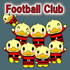 少年サッカークラブ(アヒル)