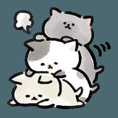 まるい猫たち。日常編。