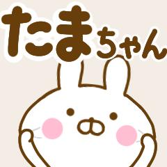 ☆たまちゃん☆が使う名前スタンプ