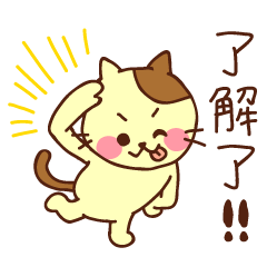 可愛い猫ちゃん(台湾語)