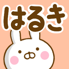 ☆はるき☆が使う名前スタンプ