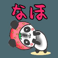 イチゴinなほパンダの日常会話(苗字/名前)