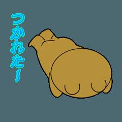 くまのハタ坊 2