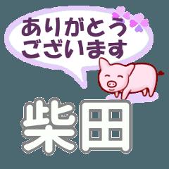 柴田「しばた」さん専用。日常会話
