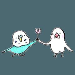 インコのヨシさんと文鳥スーさん3