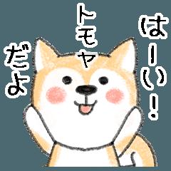 お名前シリーズ・豆芝:トモヤさん用