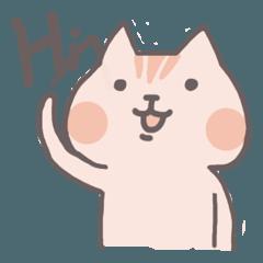 Shajo cat