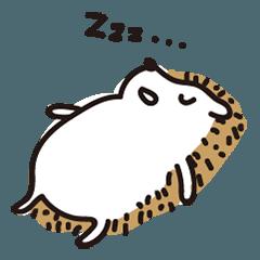 lazy lazy hedgehog