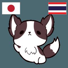 [LINEスタンプ] 犬 : タイ語勉強しよう 日本語タイ語