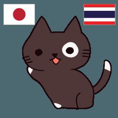[LINEスタンプ] 猫 タイ語勉強しよう 日本語タイ語