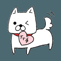 白犬シロちゃん