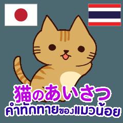 [LINEスタンプ] 猫あいさつ タイ語日本語