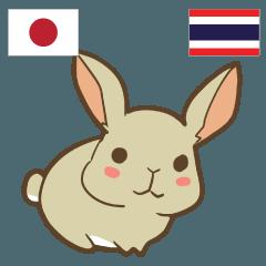 [LINEスタンプ] ウサギ タイ語勉強したい 日本タイ