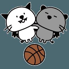 バスケ大好きコウモリネコ