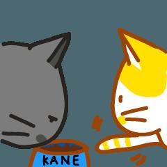 LULU and KANE's Life
